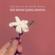 Sen Benim Şarkılarımsın (feat. Hande Mehan) - Cem Adrian