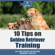 Mav4Life - 10 Tips on Golden Retriever Training: Getting Golden Retriever Training Started! (Unabridged)