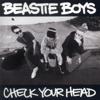 Beastie Boys - Check Your Head  artwork