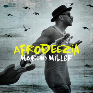 Marcus Miller - Afrodeezia