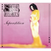 Siouxsie and The Banshees - Silver Waterfalls