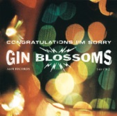 Gin Blossoms - My Car