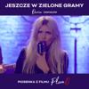 Daria Zawiałow - Jeszcze w zielone gramy - Piosenka z filmu Plan B artwork