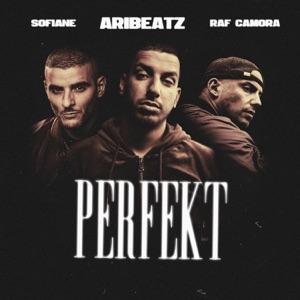 RAF Camora, AriBeatz & Sofiane - Perfekt