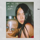 SASAMI - Not the Time
