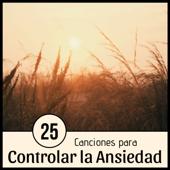 25 Canciones para Controlar la Ansiedad - 2 Horas de la Mejor Música Antiestrés con Sonidos Relajantes