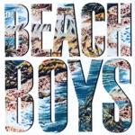 The Beach Boys - Male Ego