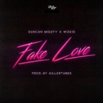 songs like Fake Love (feat. Duncan Mighty & Wizkid)