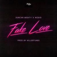 StarBoy - Fake Love (feat. Duncan Mighty & WizKid) - Single