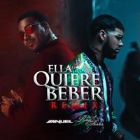 Ella Quiere Beber (feat. Romeo Santos) [Remix] - Anuel AA