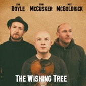 John Doyle, John McCusker & Mike McGoldrick - Banks of the Bann
