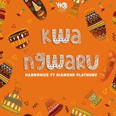 Kwa Ngwaru (feat. Diamond Platnumz) - Harmonize