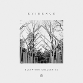 Evidence-Elevation Collective