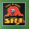 Cedric Im Brooks & the Light of Saba - Africa artwork