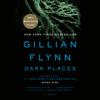 Gillian Flynn - Dark Places: A Novel (Unabridged) artwork