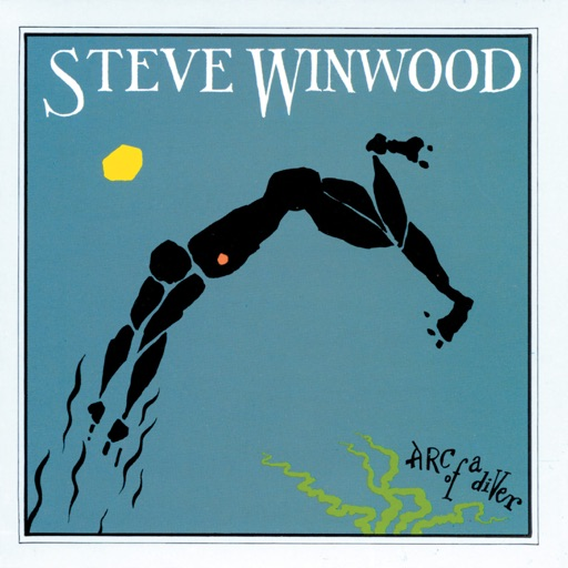Art for While You See A Chance by Steve Winwood