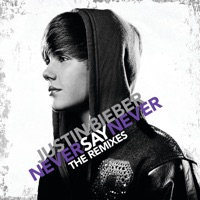 Never Say Never (The Remixes) - EP Mp3 Download