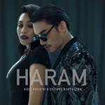 Download Lagu Hael Husaini & Dayang Nurfaizah - Haram