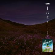 NOVA (The Remixes, Vol. 1) - RL Grime - RL Grime