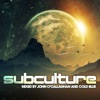 Subculture (Mixed By John O'Callaghan & Cold Blue)