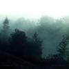 Frammenti - Mattia Cupelli