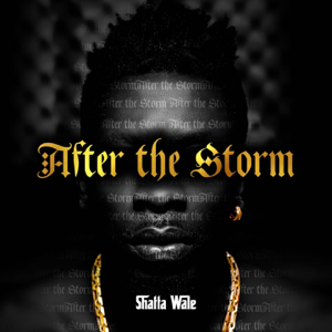 Shatta Wale - After the Storm