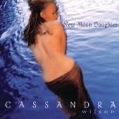 Cassandra Wilson - Last Train to Clarksville