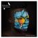 Bipolar Sunshine Daydreamer (Fred V & Grafix Remix) - Bipolar Sunshine