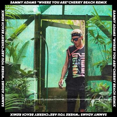 Where You Are (Remix) - Single - Sammy Adams