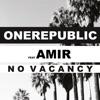 No Vacancy feat Amir French Language Version Single