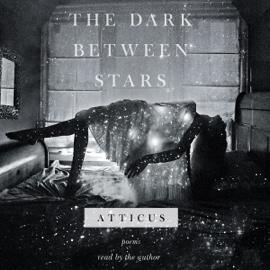 The Dark Between Stars (Unabridged) audiobook