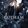 Gotham, Seasons 1-4 wiki, synopsis