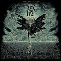 Black Fast - Husk artwork
