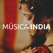 Música India: la Mejor Colección de Música World (Flauta India, Sitar, Bansuri, Tabla, Ocarina, Didgeridoo, Gong)