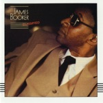 James Booker - One for the Highway