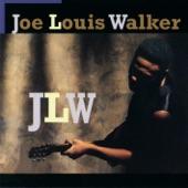 Joe Louis Walker - Lost the Will to Love Me