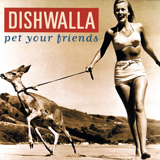 Art for Counting Blue Cars by Dishwalla