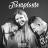Transplante feat Bruno Marrone Single
