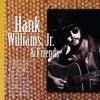 Hank Williams Jr Friends