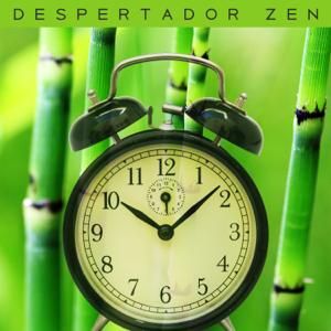 Academia de Música de la Música Ambiente - Tiempo Zen