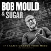 If I Can't Change Your Mind (The Collection), Bob Mould & Sugar