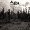 Saiva - Markerna bortom artwork