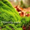 Memory Lane - Rebecca Jody