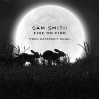 Sam Smith - Fire on Fire.Mp3