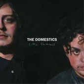 The Domestics - Little Darkness