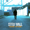 Steo Wall - What's Wrong with the World Ma? artwork
