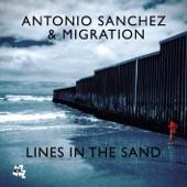 Antonio Sanchez - Bad Hombres Y Mujeres