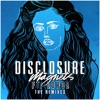 magnets-feat-lorde-the-remixes-ep