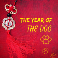 Chinese New Year Collective - The Year of the Dog - Chinese New Year Traditional Asian Festive Folk Music for Celebration artwork