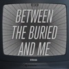 The Best of Between the Buried and Me, Between the Buried and Me